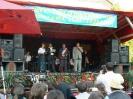 Zilele Nasaudului 2007_6
